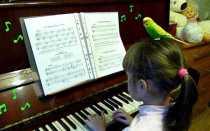 Музыка и песни для попугаев