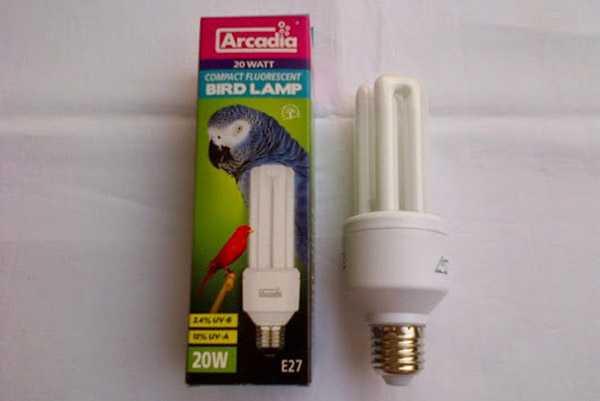 Ультрафиолетовая лампа Аркадия